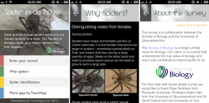 spider in da house app